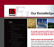 E3 Consulting Website